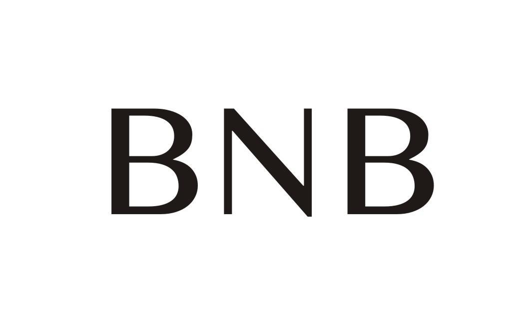 01类-化学原料BNB商标转让