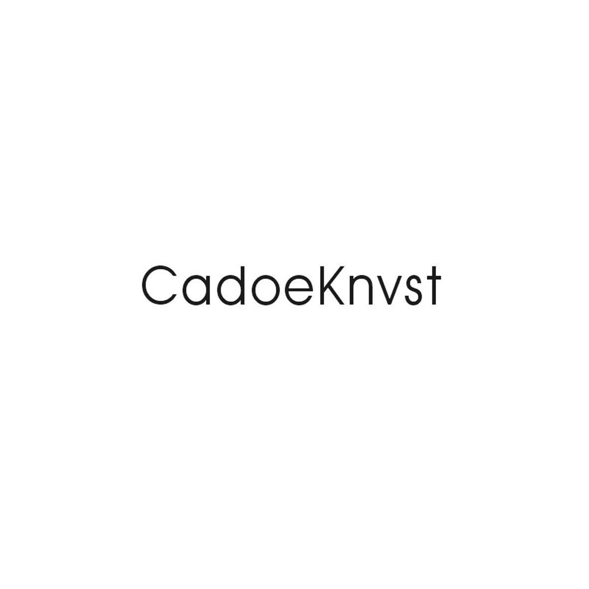 18类-箱包皮具CADOEKNVST商标转让